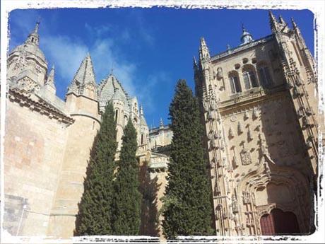 Tagebuch - Die Kathedrale von Salamanca
